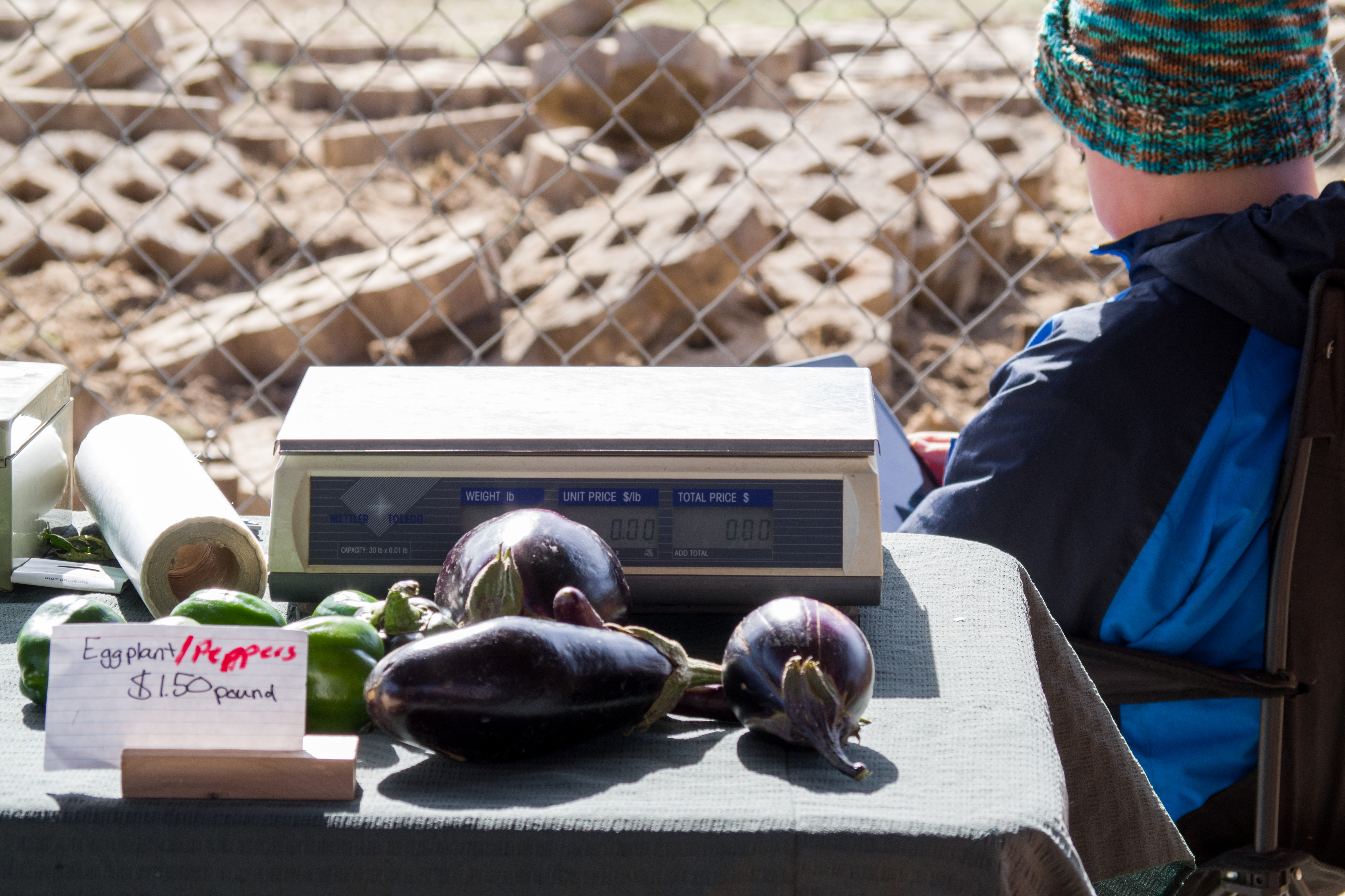 Eggplants and vendor at table at a farmer's market. Photo © Jillian Regan 2017.