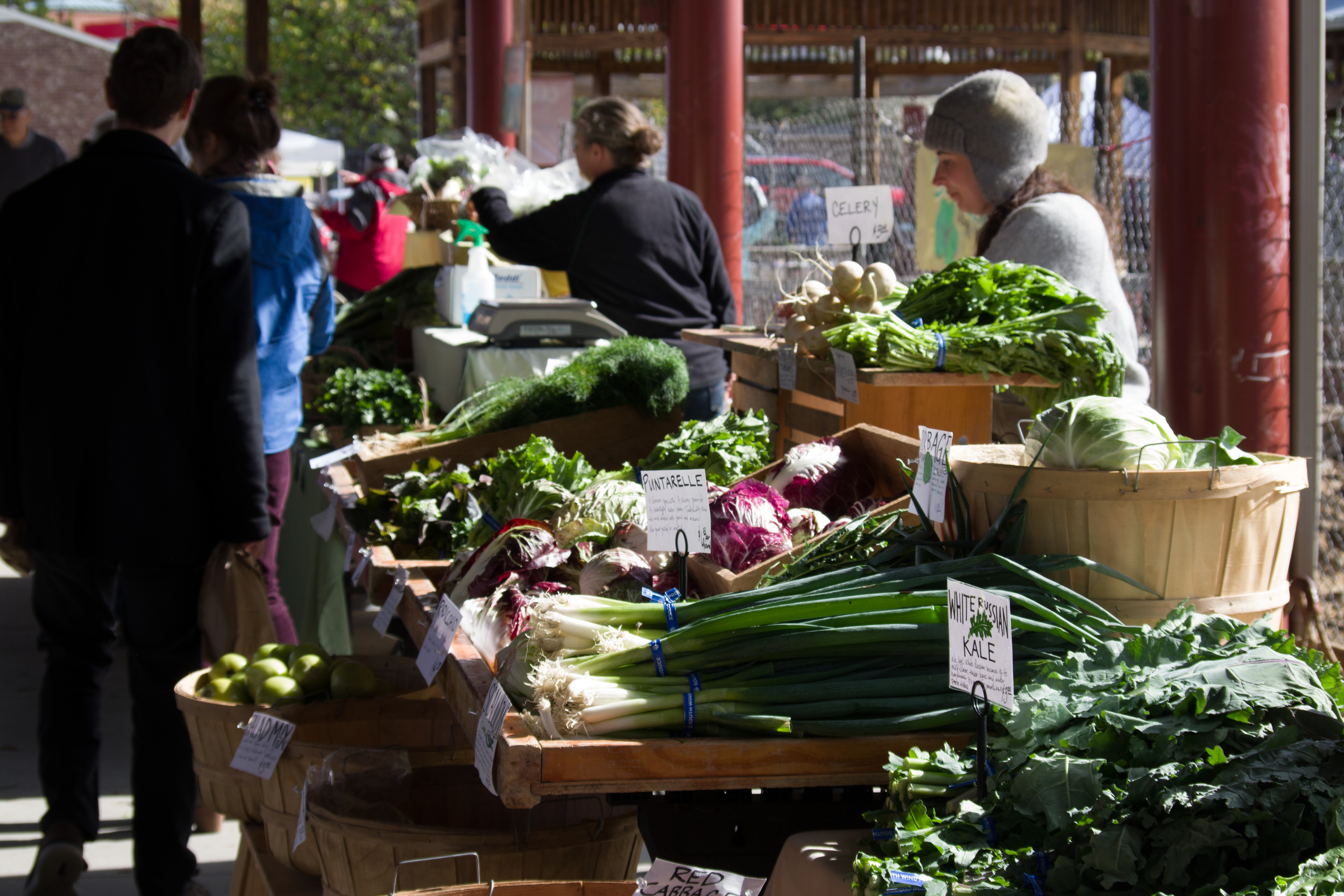 Shoppers, vendors, and fresh produce at a Farmer's Market. Photo © Jillian Regan 2017