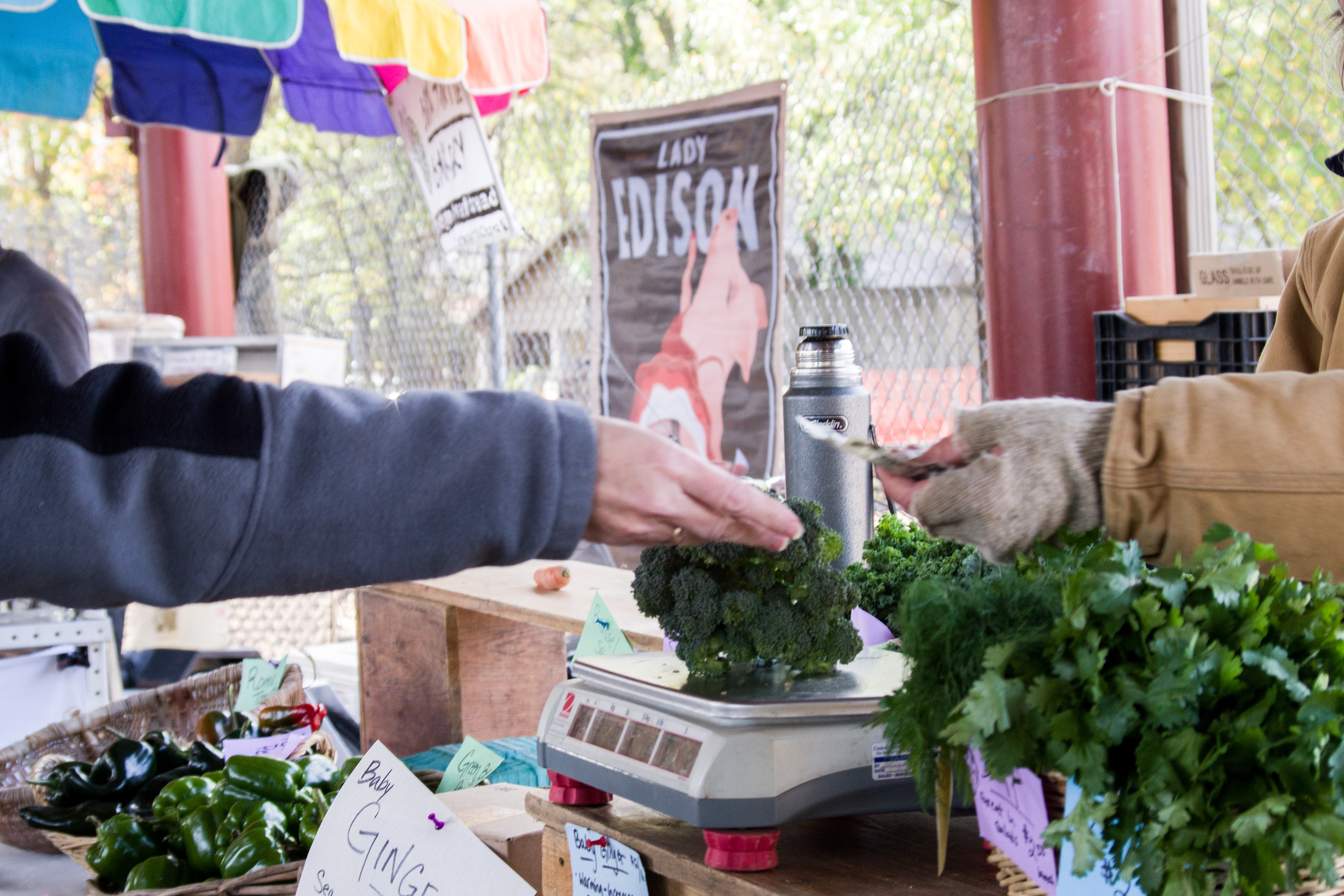 A customer buying fresh produce from a vendor at a farmer's market. Photo © Jillian Regan 2017